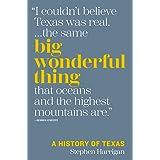Big Wonderful Thing: A History of Texas