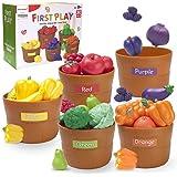 JIETENGFEI Fruit Veg Play Food (Fruit Veg 5 Set)