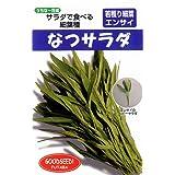 フタバ種苗 【うちな~交配】 なつサラダ (葉菜) 種・小袋詰(20ml)