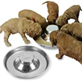 Podinor Stainless Steel Puppy Dog Bowls, Pets Puppies Feeding Food and Water Weaning Bowls Dishes Feeder (2 Pack)