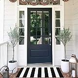 Seavish Indoor Outdoor Doormats, 2'x4.3' Black and White Ivory Stripes Rug Handmade Woven Runner Floor Rug, Machine Washable