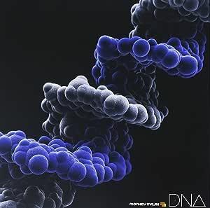DNA (ALBUM+Blu-ray Disc)