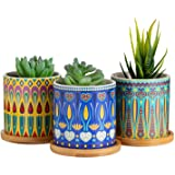 Dsben 3.5 Inch Succulent Plant Pots, Small Mandala Style Flower Ceramic Planter Indoor with Bamboo Tray for Cactus, Herbs, Ho