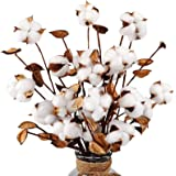 """AGEOMET 5pcs 21"""" Cotton Stems with 4 Cotton Flower Heads and Leaves for Fall Farmhouse Style Home Decoration Brown"""