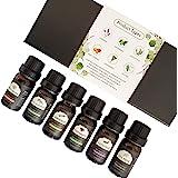 Essential Oils 6 Pack 10ml 100% Pure Natural Aromatherapy Essential Oil Set Essential Oils for Diffuser Humidifier Massage Ha