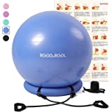 RGGD&RGGL 65cmバランスボール 厚い固定リング付き 環境にやさしい アレルギー防ぎエクササイズボール アンチバーストヨガボール 耐荷重997kg ジム/ホーム/オフィスなどに適用 椅子