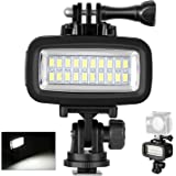 Neewer Waterproof Up to 131ft/40m Underwater 20 LED 700LM Flash Dimmable Fill Night Light with 3 Color Filter(White, Orange,
