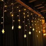 Salcar イルミネーションライト ストリングライト フェアリーライト クリスマス飾り 電飾 雪型 防水 クリスマス 正月 ハロウィーン パーティー 庭 用 3.2*0.8M 【1年間の安心保証】