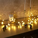 EAMBRITE Globe String Garland 8.8Ft 84 Led Decorative Starry Fairy Lights Indoor Outdoor String Lights Plug in for Bedroom Ch