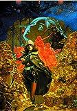 """黄泉ヲ裂ク華【予約特典】""""大屋 和博""""氏描きおろし、学園ダンジョンRPGシリーズ ポートレートSET DLC 同梱…"""