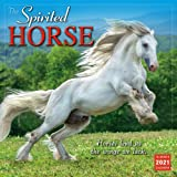 2021 The Spirited Horse 16-Month Wall Calendar