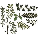 Sizzix Thinlits Dies Garden Greens by Tim Holtz 9Pk, Carbon Steel, Multi-Colour, 19.1 x 14.4 x 0.4 cm