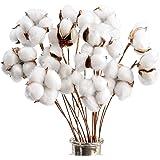Kraftex Cotton Stems Farmhouse Decorations (20 Pack) Cotton Decor Floral Stems & Artificial Branches. Faux Cotton Flowers Pla