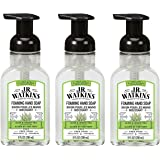 J.R. Watkins Foaming Hand Soap For Bathroom or Kitchen, Scented, USA Made And Cruelty Free, 9 Fl Oz, Aloe & Green Tea, 3 Pack