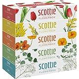 スコッティ ティシュー フラワーボックス 320枚(160組) 5箱