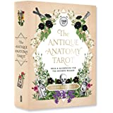 The Antique Anatomy Tarot Kit: Deck and Guidebook for the Modern Reader: A Deck and Guidebook for the Modern Reader
