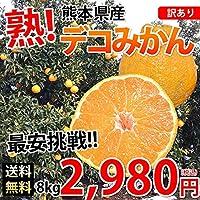 デコポン 同品種 訳ありデコみかん 送料無料 8kg S~3L 熊本県産 みかん ミカン 蜜柑 不知火