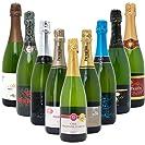 本格シャンパン製法だけの厳選泡9本セット((W0S905SE))(750mlx9本ワインセット)