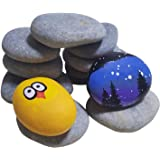 ShoppeWatch River Rocks for Painting – Smooth Crafts Paint Stones – Flat Signing Surface – Kindness Decorative Pebbles – 12 P