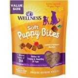 Wellness Soft Puppy Bites Natural Grain Free Soft Puppy Treats, Lamb & Salmon, 8-Ounce Bag