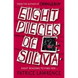 Eight Pieces of Silva: an addictive mystery that refuses to let you go