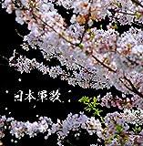 決定盤 日本軍歌 ベスト