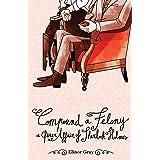 Compound a Felony: A Queer Affair of Sherlock Holmes