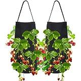 植栽は、バッグ、2パックトマトイチゴ栽培バッグ、バッグを吊るすDIY耐久性に優れた不織布8つの穴、野菜の花がハンドルに工場バッググロウグロウ