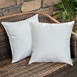 MIULEE Pack of 2 Christmas Decorative Outdoor Waterproof Pillow Cover Square Garden Cushion Case PU Coating Throw Pillow Cove