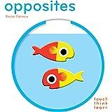 Touchthinklearn: Opposites