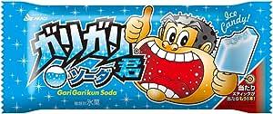 赤城乳業 ガリガリ君ソーダ 110ml×31本