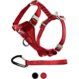 Kurgo Tru-Fit Crash Tested Dog Harness, Enhanced Strength Dog Vest, Dog Safety Harness with Pet Seat Belt Tether for Car, Med