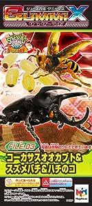 ジュース合成 グミックス ワンダーラボFile03 コーカサスオオカブト&オオスズメバチ&ハチのコ