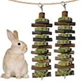 2PCS Bunny Chew Toys for Teeth Grinding, Chinchilla Treats Organic Bamboo Sticks Natural Fruitwood Branches for Rabbits Guine