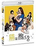 猫は抱くもの Blu-ray
