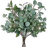 Mixed Faux Eucalyptus Leaves Sprays Artificial Silver Dollar Eucalyptus Branches Plants Fake Seeded Eucalyptus Leaf Sprays Ar