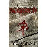 Scarred (The Elm Stone Saga Book 2)