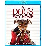 ベラのワンダフル・ホーム ブルーレイ&DVDセット [Blu-ray]