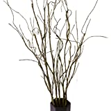 FeiLix 5PCS Artificial Curly Willow Branches, Decorative Dry Twigs, 30.7 Inches Fake Bendable Sticks Vintage Vines Stems DIY