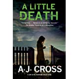 Little Death: A Forensic Cold Case Mystery: 3