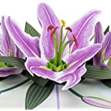 Paper Love Lilies Pop Up Card, Handmade 3D Popup Greeting Cards for Mothers Day, Valentines Day, Wedding, Anniversary, Love,
