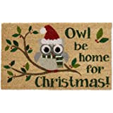 DII Natural Coir Fiber, 18x30 Entry Way Outdoor Door Mat with Non Slip Backing - Owl Be Home