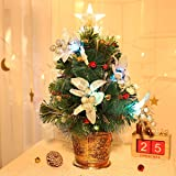 Unomor Tabletop Christmas Tree with LED Star Treetop, Mini Artificial Christmas Tree with Fiber Optic Lights and Silver Berri