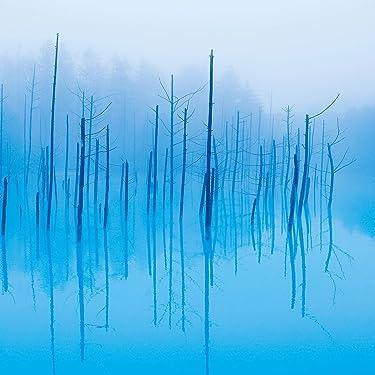 北海道 iPad壁紙 or ランドスケープ用スマホ壁紙(1:1)-1 - 青い池 上川郡美瑛町