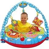 Galt Toys, Playnest & Gym - Farm, Baby Activity Center & Floor Seat