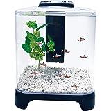 Penn Plax Betta Fish Tank Aquarium Kit with LED Light & Internal Filter Desktop Size, 1.5 Gallon