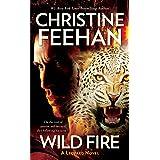 Wild Fire: 04