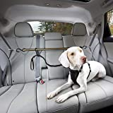 Kurgo Auto Zipline for Dogs, Adjustable Dog Safety Belt Leash, Pet Seat Belt Tether, Reduce Distracted Driving, Includes Zip
