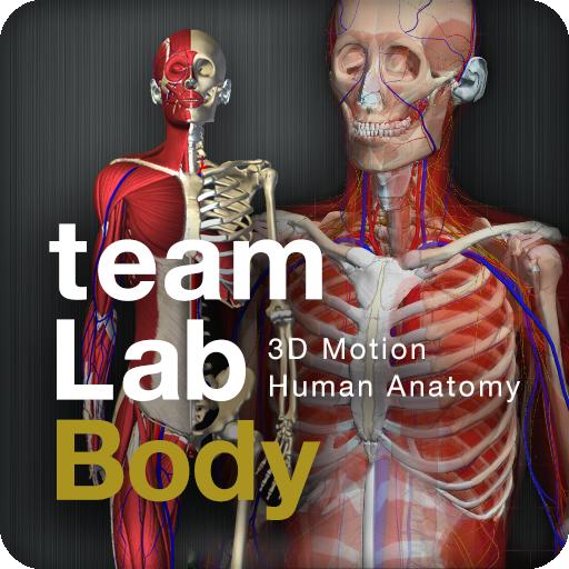 teamLabBody