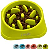 Zenify Dog Bowl Slow Feeder - Large 500ml Healthy Eating Pet Interactive Feeder with Anti-Skid Non-Slip Grip Base to Reduce O